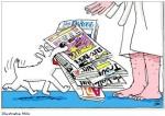 krant-abo